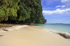 Песчаный пляж Стоковое Изображение