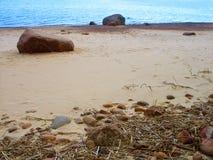 Песчаный пляж Gulf of Finland стоковые фотографии rf