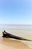 Песчаный пляж logon Стоковые Изображения
