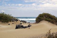 Песчаный пляж Лансароте стоковое изображение rf