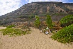 Песчаный пляж, Оаху Стоковая Фотография RF
