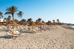 Песчаный пляж с deckchairs и парасолями Стоковое фото RF