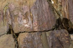Петроглифы Старые картины утеса в горах Altai Стоковые Изображения RF