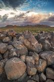 Петроглифы в национальном парке Saguaro Стоковое фото RF