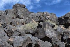 Петроглифы на холме - искусстве утеса Стоковая Фотография RF