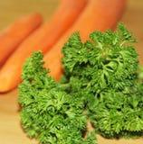 Петрушка и морковь Стоковое фото RF