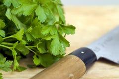 петрушка ножа Стоковое фото RF