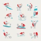 Петухи и курицы спорта Стоковое Фото