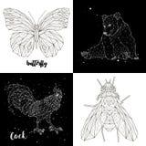 Петух, бабочка, медведь, муха установленные созвездия Стоковое Изображение RF