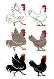 Петух и курица иллюстрация вектора