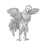 Петух Иллюстрация крана в винтажном стиле гравировки Ярлык Grunge, стикер для ферм и показывать производства Стоковое Изображение