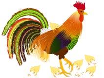 Петух с молодыми цыпленоками Стоковое Изображение RF