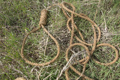 Петля веревочки Стоковые Фотографии RF