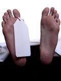 пец ноги бирки Стоковые Изображения RF