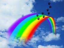 Печати лапок над радугой стоковое изображение rf