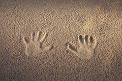 Печати в песке. Стоковая Фотография