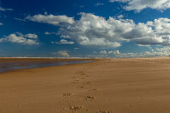 Печати копыта лошади на пляже с голубым небом Стоковое Изображение