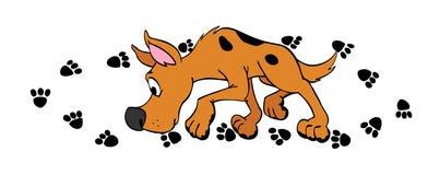 Печати лапки собаки Стоковое Изображение