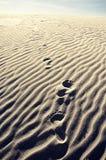 Печати ноги в песчанной дюне стоковые изображения