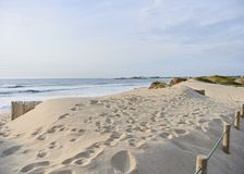 Печати ноги на дюнах стоковые фотографии rf