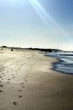 печати ноги пляжа Стоковое Изображение
