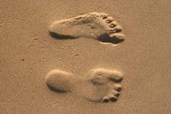 печати ноги Стоковые Изображения