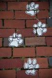 Печати собаки Стоковые Фотографии RF
