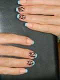 Печать леопарда на ногтях Стоковые Изображения RF