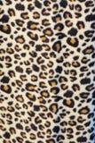 печать леопарда материальная Стоковое Фото