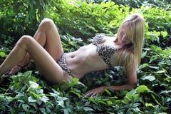 печать леопарда 4 бикини белокурая сексуальная Стоковое Фото