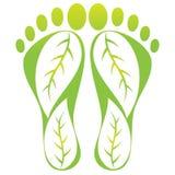 печать листьев ноги Стоковое фото RF