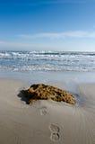 Печать ноги в песке протягивая в океан Стоковые Фотографии RF