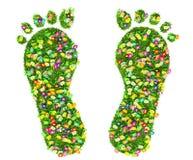 Печать ноги сделанная из зеленой изолированных травы и цветков иллюстрация штока
