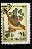 Печать почтового сбора СССР, серия - Воробьинообразная птица, 1981 стоковое фото