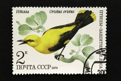 Печать почтового сбора СССР, серия - птицы - демонстранты леса, 1979 стоковая фотография rf