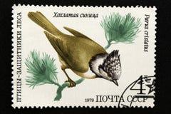 Печать почтового сбора СССР, серия - птицы - демонстранты леса, 1979 стоковое изображение