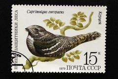 Печать почтового сбора СССР, серия - птицы - демонстранты леса, 1979 стоковые фото