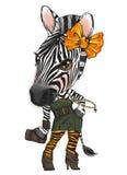 Печать футболки женщины зебры Стоковое фото RF