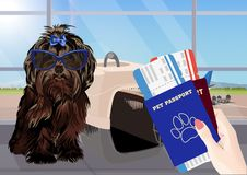 Airport waiting room, dog in the foreground. Terminal interior, panoramic window, airplane. Time to travel. Travel concept,. Vector illustration vector illustration