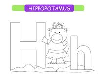 Letter H and funny cartoon hippopotamus. Coloring page. Animals alphabet a-z. Cute zoo alphabet in vector for kids learning Englis stock illustration
