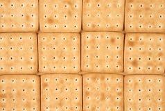 12 печений в строках Стоковая Фотография