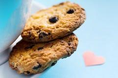 печенье голубого шоколада печениь backgro домодельное Стоковые Фото
