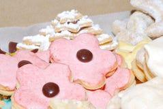печенье покрасило Стоковое Фото