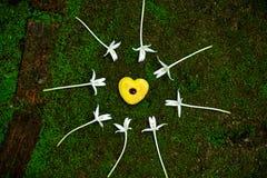 Печенье сердца и белый цветок дерева пробочки Стоковая Фотография RF