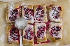 Печенье слойки с клюквами Стоковые Фото