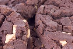 печенье шоколада стоковая фотография rf