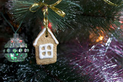 Печенье Gingerbread на рождественской елке Стоковые Фото