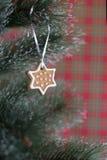 Печенье gingerbread рождества на рождественской елке Стоковое фото RF