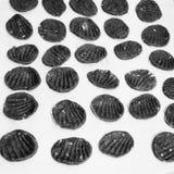 Печенье Vegan Стоковые Фотографии RF