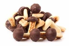 Печенья в форме гриба Стоковое Изображение